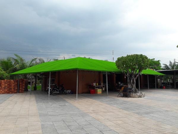 Cỏ nhân tạp trên mái nhà
