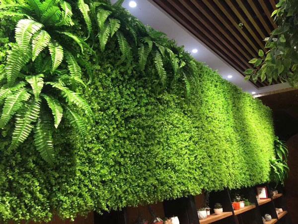 Bức tường xanh nhân tạo