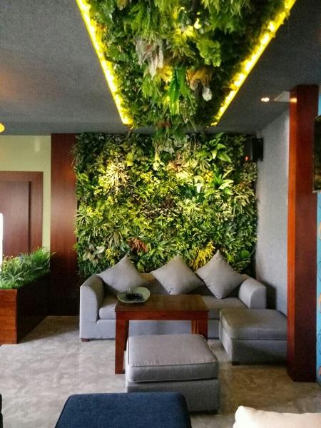 Tường cây lá giả hoa thịnh phát