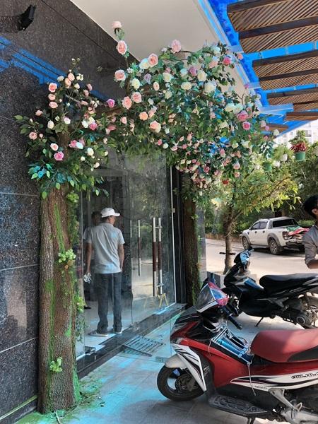 Hoa lá cành giả